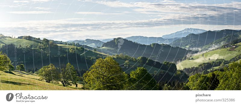 Beautiful Tree Landscape Mountain Meadow Natural Beautiful weather Hill Austria Mostviertel