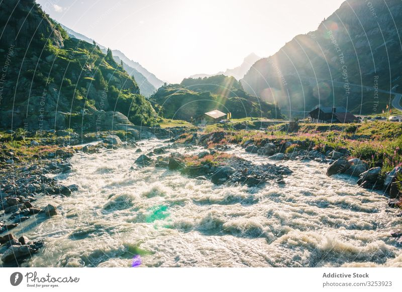 Foamy mountain stream flowing through stones in sunlight river nature power creek park water landscape travel waterfall scenic natural cascade motion scenery