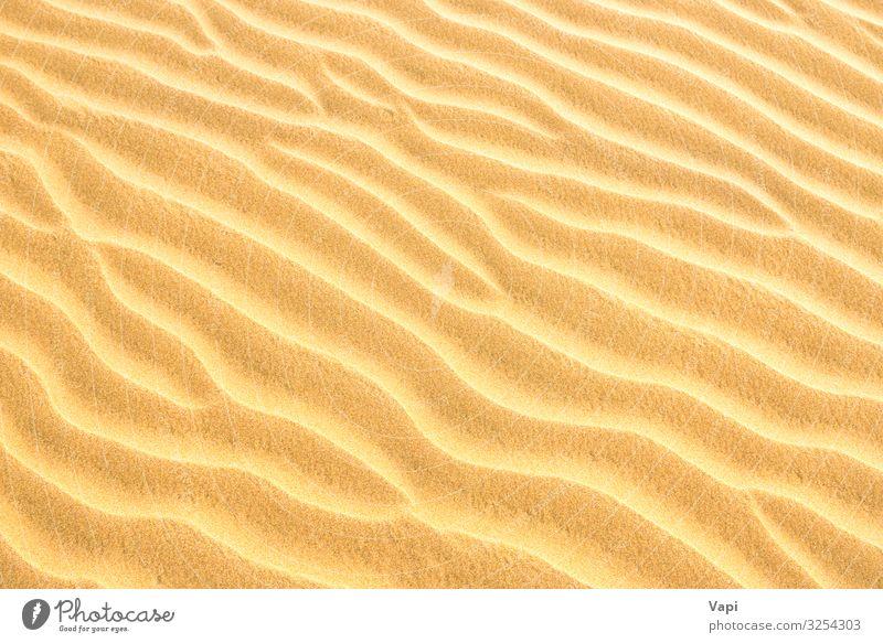 Texture of sand dunes Design Beautiful Safari Summer Summer vacation Sun Sunbathing Beach Ocean Island Waves Wallpaper Nature Sand Sunlight Wind Coast Desert