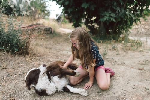 love of animals Leisure and hobbies Playing Feminine Child Girl Infancy 1 Human being 8 - 13 years Blonde Long-haired Animal Pet Dog Sympathy Friendship
