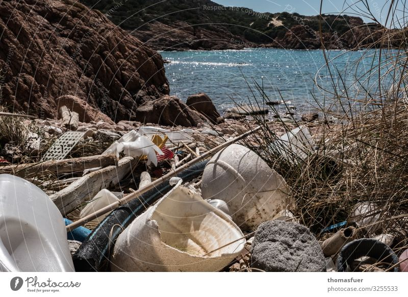 Garbage on the beach Crockery Bowl Bottle Shopping Vacation & Travel Tourism Summer vacation Nature Horizon Sun Climate Climate change Beautiful weather Coast