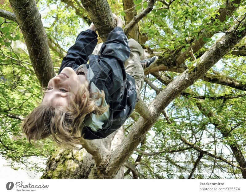 Human being Child Green Tree Joy Leaf Environment Emotions Spring Playing Boy (child) Hair and hairstyles Funny Happy Masculine Infancy