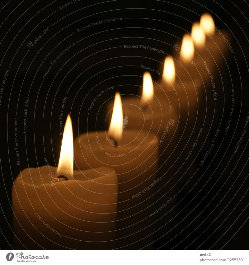 Attention! Candle Candlelight Flame Illuminate Many Accuracy Arrangement Direct Line Dark Warm light Candlewick Colour photo Exterior shot Detail Deserted