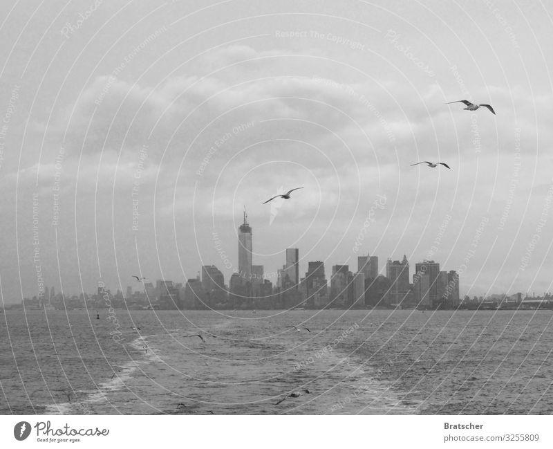 New York, New York. Water Clouds Climate Climate change Town Port City High-rise Tourist Attraction Landmark World Trade Center Manhattan Transport Navigation