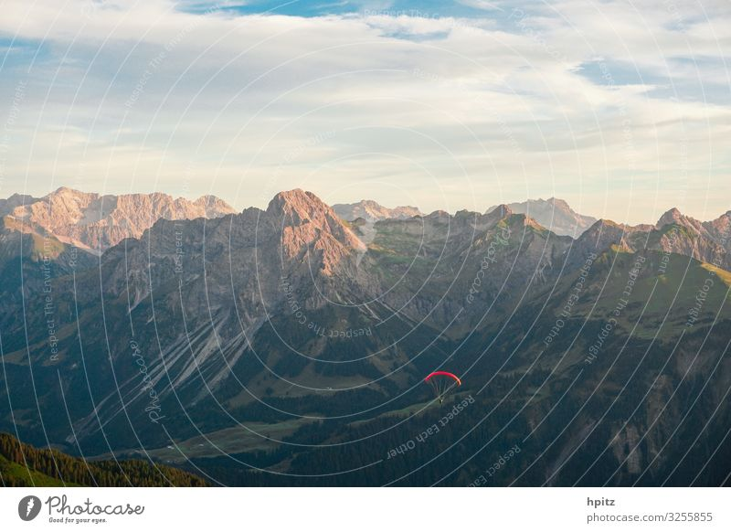 Flight climate-neutral Paragliding Alps Mountain Aircraft Flying Free Red Joy Freedom Calm Colour photo Exterior shot Evening Sunlight Panorama (View)