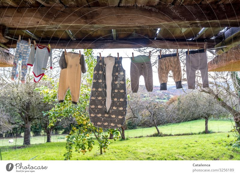 Rope team | baby clothes are hanging in the autumnal breeze under a balcony to dry, a lemon and several fruit trees stand on a meadow in the background Layette