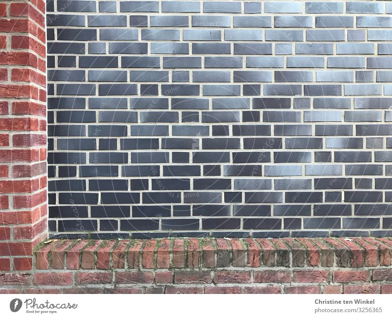 Walls in different colours Wall (barrier) Wall (building) Facade Authentic Exceptional Hideous Uniqueness Near Gloomy Town Gray Red Black Boredom Perspective