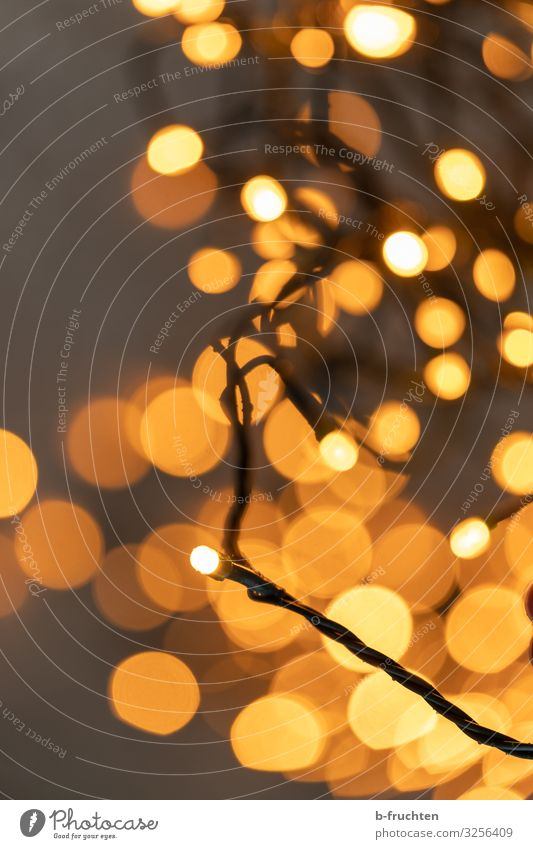 Golden hour Feasts & Celebrations Christmas & Advent New Year's Eve Sign Glittering Illuminate Happy Orange Fairy lights Blur Chain Lamp Lighting Brilliant