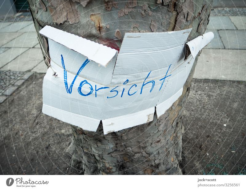 attention Save Climate Tree trunk Prenzlauer Berg Sidewalk Germany Cardboard Word Pen Letters (alphabet) Simple Near Under White Moody Safety Modest