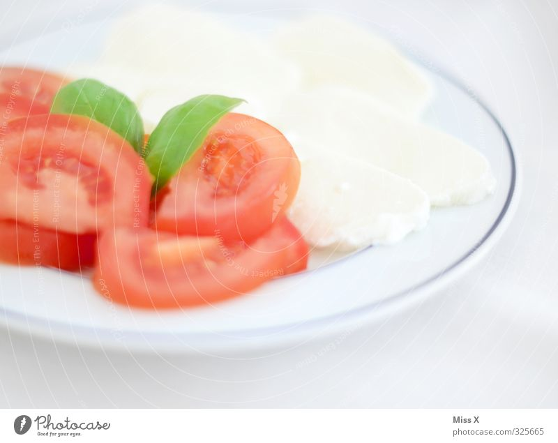 red white green Food Dairy Products Vegetable Herbs and spices Nutrition Lunch Buffet Brunch Banquet Italian Food Plate Fresh Healthy Delicious Tricolor Tomato