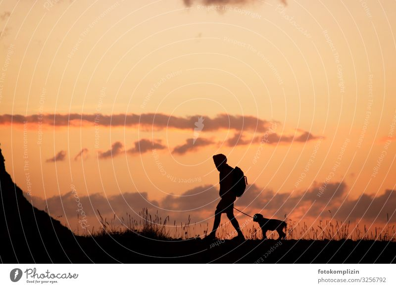 Hiker with dog at sunset Love of animals Man and dog Friendship dog love Humans and animals Animal and human dog training two Animal Communication in common