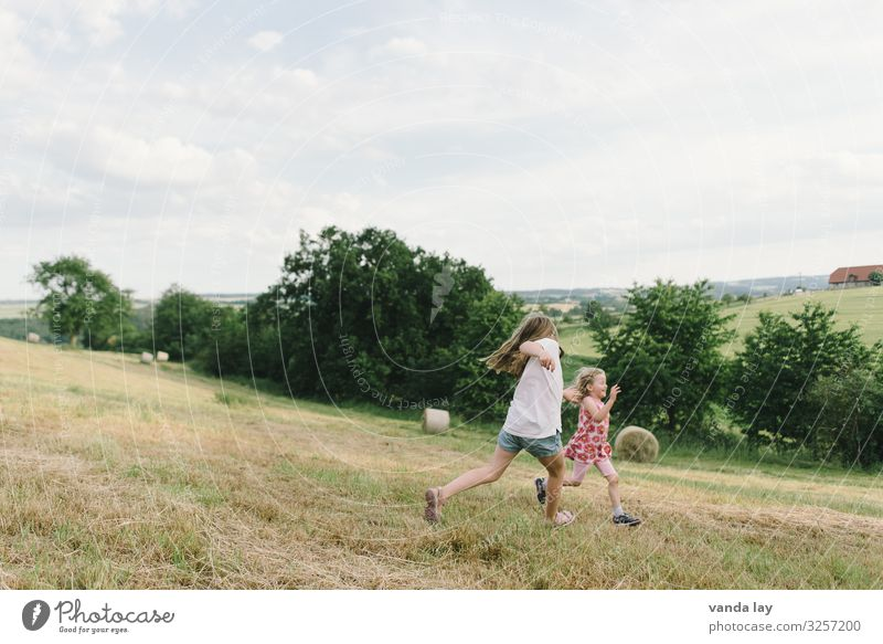 Children play catch and run in the meadow Happiness Light heartedness Children's game Running Catch Meadow Leisure and hobbies Vacation & Travel Summer vacation