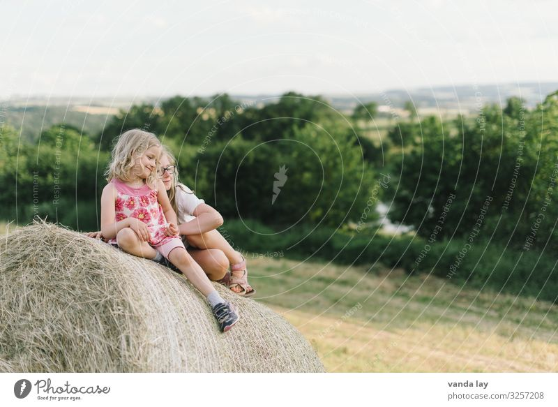 Farm holidays with children on bales of straw Leisure and hobbies Copy Space top Vacation & Travel Summer vacation Sunlight Joie de vivre (Vitality) Playing