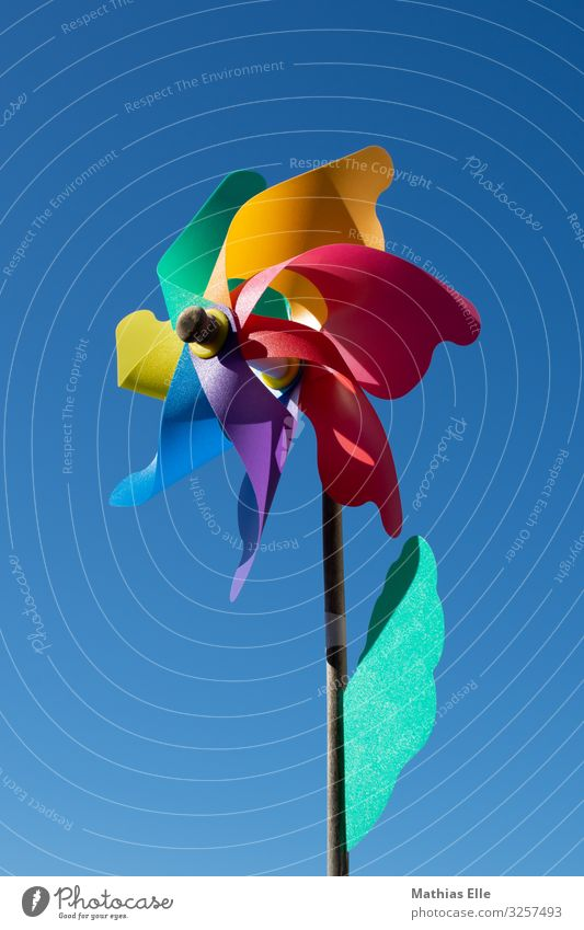 Windmill toy with colorful leaves Style Playing Summer Garden Decoration Feasts & Celebrations Art Work of art Sculpture Toys Kitsch Odds and ends Pinwheel