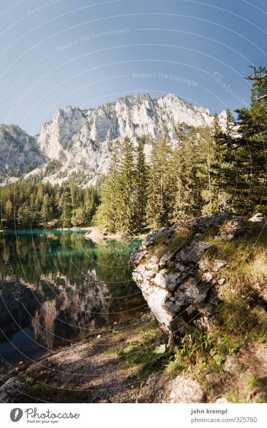 Vacation! Environment Landscape Water Cloudless sky Beautiful weather Forest Alps Mountain Lakeside Austria Federal State of Styria Relaxation Authentic Large