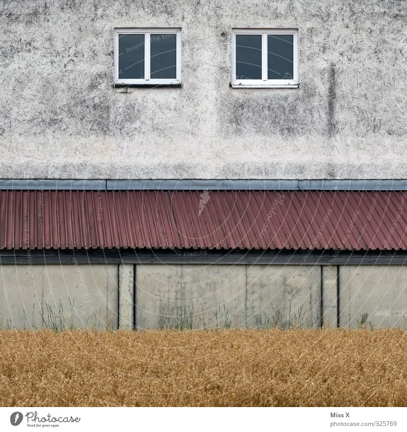 Old Window Wall (building) Wall (barrier) Car Window Field Gloomy Roof Transience Decline Redecorate Outskirts