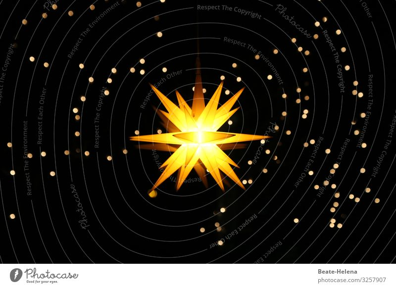 The light in the darkness Winter Flat (apartment) Feasts & Celebrations Christmas & Advent Sky Cloudless sky Night sky Stars Decoration Christmas star