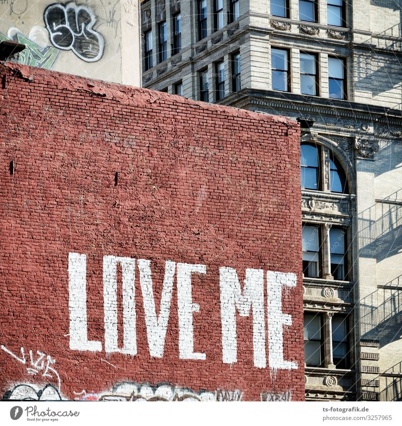 Love me, brick! New York City Manhattan USA House (Residential Structure) Wall (barrier) Wall (building) Facade Stone Brick Sign Characters Graffiti Town Brown