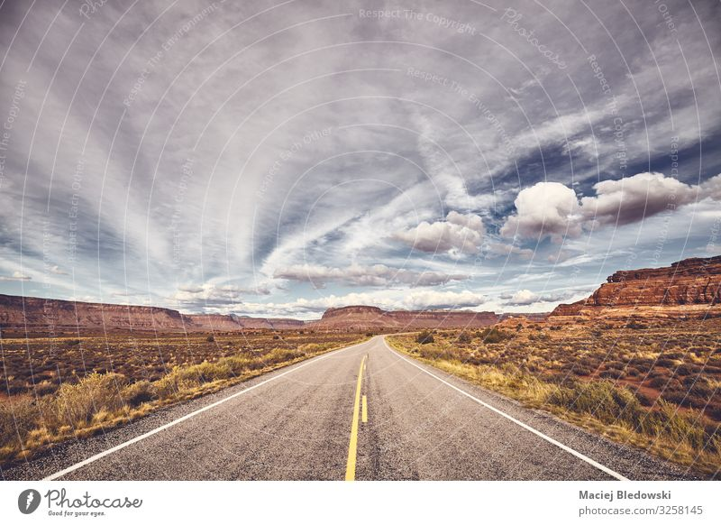 Scenic road in Canyonlands National Park, USA. Vacation & Travel Tourism Trip Adventure Freedom Expedition Cycling tour Summer Summer vacation Mountain