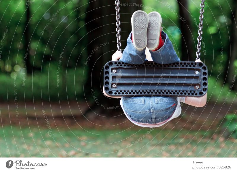 X-treme schaukeln Human being Child Body 1 3 - 8 years Infancy Playing play Playground Funny kind Colour photo Day