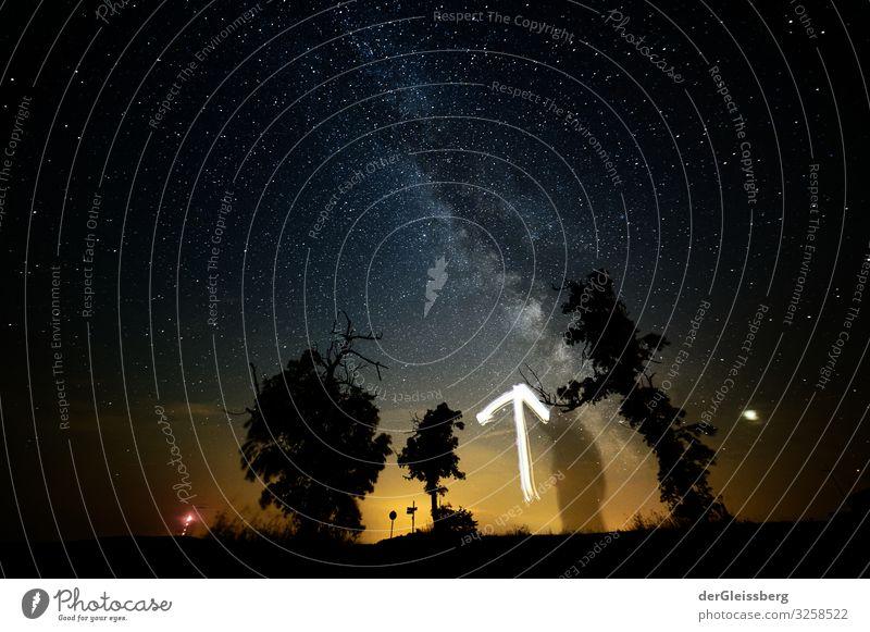 Look up, please. Landscape Sky Night sky Stars Tree Dream Free Determination Far-off places Milky way Arrow Colour photo Exterior shot Long exposure