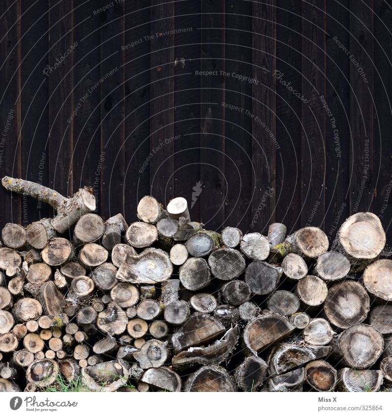 Wood in front of the hut Living or residing Flat (apartment) Energy industry Renewable energy Hut Brown Supply Firewood Fuel Burn Tree trunk Branch Colour photo