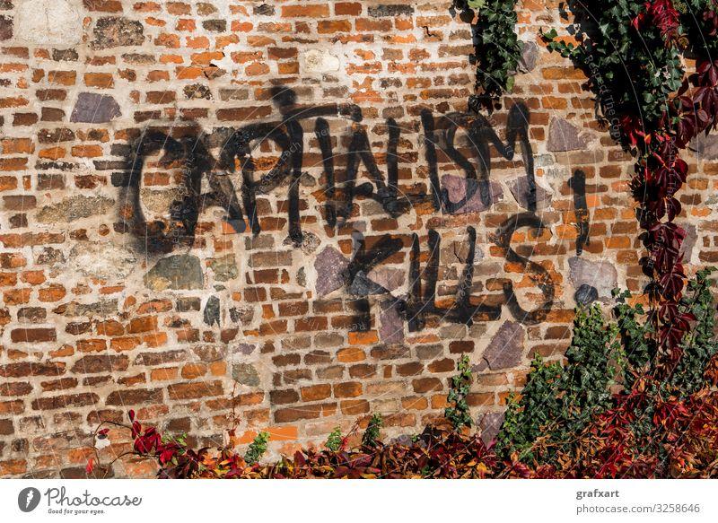 Town Graffiti Wall (building) Art City life Characters Money Information Write Brick Society Phenomenon Figure of speech Ivy Protest Spray