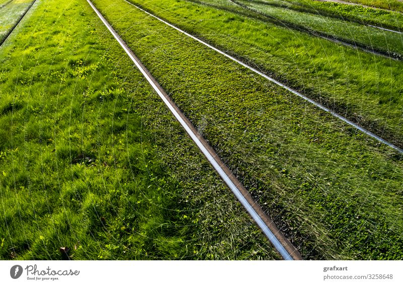 Shiny Steel Rails Through Green Grass Meadow background cargo city concept detail development direction ecological ecology environment environmental protection