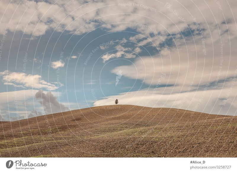 Tuscany abstract hilly landscape Environment Nature Landscape Earth Sky Autumn Winter Tree Field Hill Agriculture Italy Europe Authentic Blue Brown Bizarre