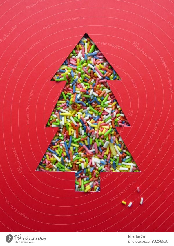 Christmas tree Characters Signs and labeling Multicoloured Red Emotions Happiness Curiosity Colour Joy Moody Desire Coulored sugar candy Christmas & Advent
