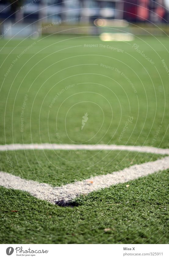 corner Leisure and hobbies Sports Stands Soccer Sporting Complex Football pitch Grass Signs and labeling Sharp-edged Gray Marker line Corner Colour photo