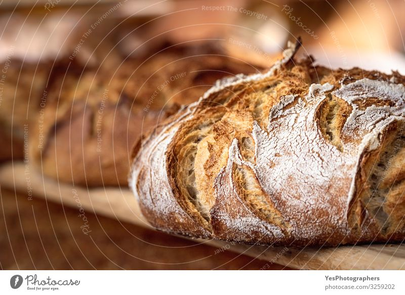 Sourdough bread with crispy crust on wooden shelf. Bakery goods Dough Baked goods Bread Roll Nutrition Shopping Healthy Eating Tradition Black bread bread buns