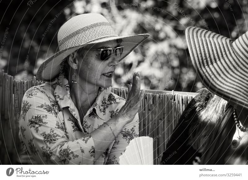 Woman Human being Lifestyle Adults To talk Senior citizen Feminine Style Communicate Elegant Crazy Curiosity Hat Argument Luxury