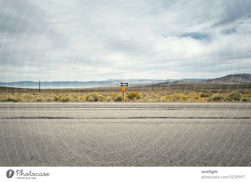 street Clouds Street Environment Mono County Mono Lake lee vining USA California Grassland Mountain Road sign Colour photo Copy Space top signpost