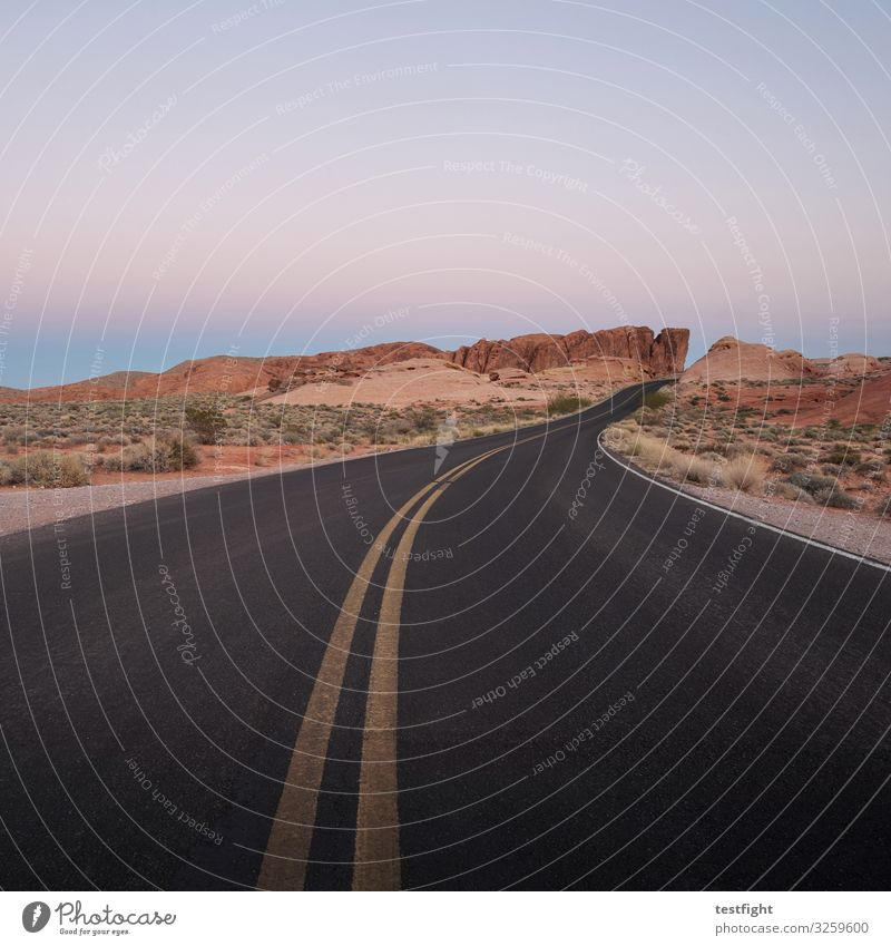 out on the highway Street Tar Coating Ground off mark Traffic lane route evening light Evening sun Light Desert Nature Sparse country overland Lonely Black