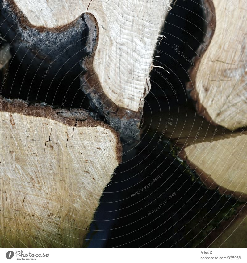 Building material / wood in front of the hut Wood Brown Tree trunk Firewood Stack of wood Tree bark Annual ring Undulation Saw Colour photo Close-up Detail
