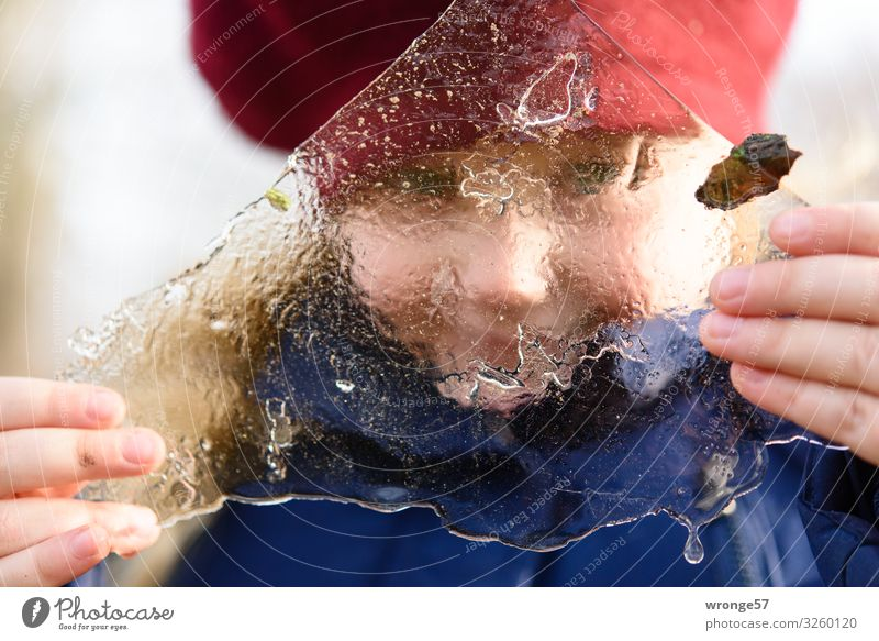 Holding the winter in your hands Adventure Winter Child Girl 1 Human being 3 - 8 years Infancy Ice Frost Cold Near Blue Red White Joy Ice floe Freeze Looking