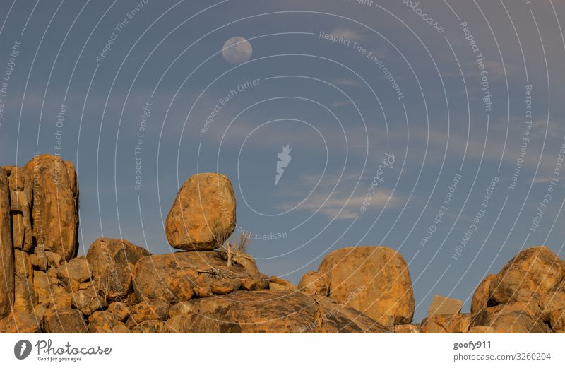 farsighted / To the moon Trip Adventure Far-off places Freedom Safari Expedition Environment Nature Landscape Earth Sky Clouds Horizon Sunlight Moon Full  moon