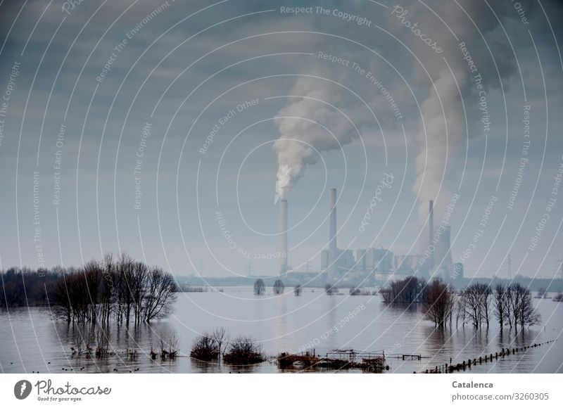 actio reactio Technology Energy industry Coal power station Industry Environment Landscape Elements Water Sky Storm clouds Winter Bad weather Tree River bank