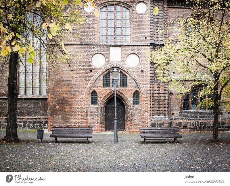 Resting place. Trip Autumn Tree Brandenburg an der Havel Town Deserted House (Residential Structure) Church Places Building Architecture Wall (barrier)