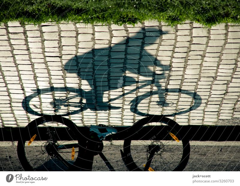 Sunday drivers as shade on cobblestone road Happy Cycling Trip Masculine 1 Human being Summer Warmth Grass Park Prenzlauer Berg Lanes & trails Bicycle