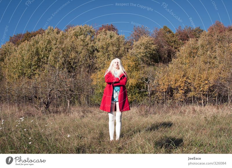 #326084 Adventure Freedom Woman Adults Life 1 Human being Environment Nature Plant Sky Autumn Field Forest Fashion Coat Blonde Wait Exceptional Brash