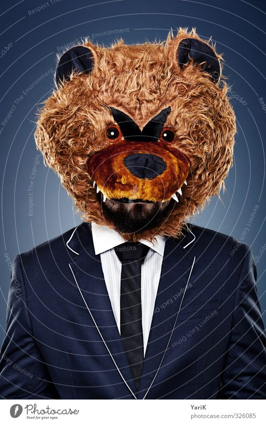 BB business bear Office work Human being Head Hair and hairstyles 1 Suit Pelt Tie Animal Whimsical Bear Surrealism Funny Colour photo Studio shot