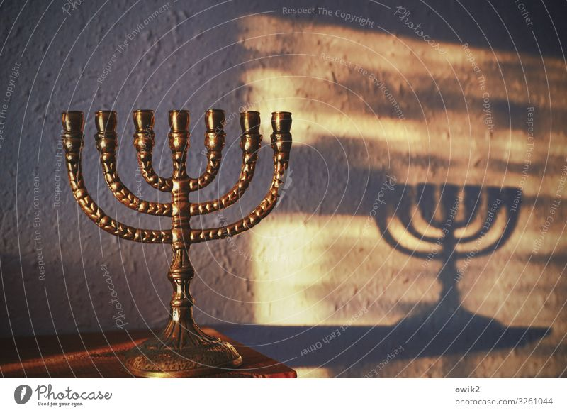 enlightenment Collector's item Menorah-im Metal Illuminate Stand Glittering Identity Religion and faith Tradition Israel Shadow play Wall (building)
