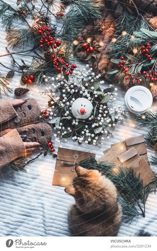 Winter mood and Christmas gift preparation Lifestyle Style Joy Living or residing Christmas & Advent Woman Adults Hand Pet Cat Decoration Candle Bow