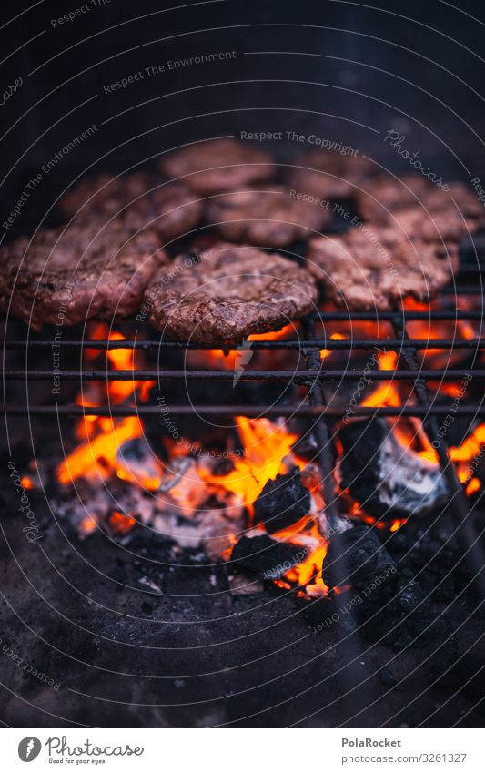 #A0# Crickets Art Esthetic Barbecue (apparatus) Barbecue (event) BBQ Grill Charcoal (cooking) BBQ season Barbecue area Meat Colour photo Subdued colour