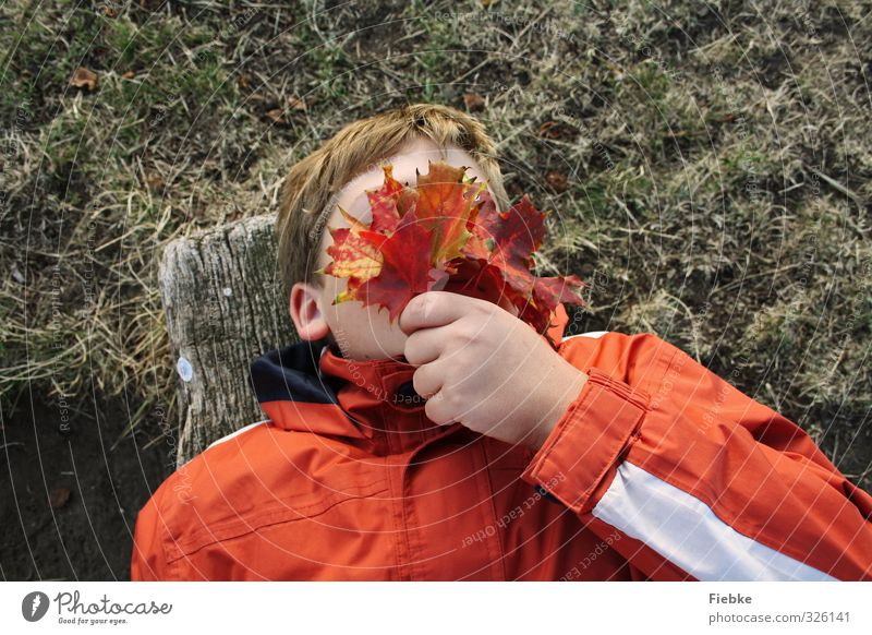 Human being Child Nature Youth (Young adults) Relaxation Hand Red Leaf Autumn Boy (child) Playing Freedom Lie Masculine Infancy Orange
