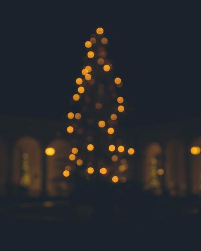 Christmas treelights Winter Tree Gold Black Peace Christmas & Advent Light (Natural Phenomenon) Fairy lights Modern Exterior shot Religion and faith