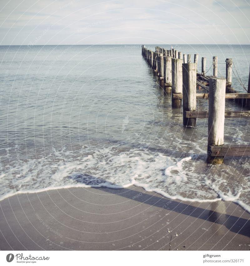 Sky Nature Water Summer Ocean Landscape Calm Beach Far-off places Environment Coast Wood Swimming & Bathing Sand Horizon Waves