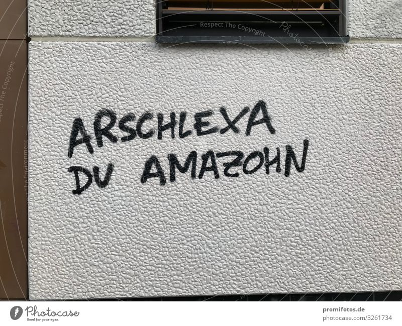 Graffit on the wall: Arschlexa du Amazohn Concrete Sign Characters Graffiti Listening Write Creepy Brown Black White Emotions Safety Protection Love Dangerous